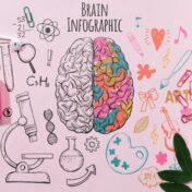 Una metodologia organizzativa innovativa: il Neurorganizing®